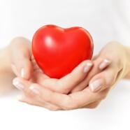 दिल धड़कने दो..!! One Heart, One Life…