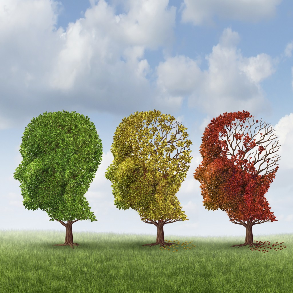Dementia affects complete personality of individual (pic source:google images)